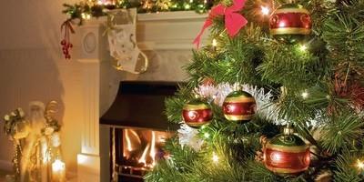 Новый 2013 год: продумываем меню и выбираем подарки