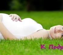 Шалфей для вызревания фолликула и роста эндометрия