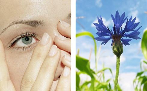 Уход за глазами – домашние маски, лосьоны и компрессы