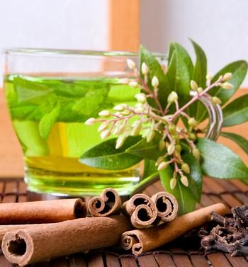 Чаепитие для похудения или Чудо свойства зеленого чая
